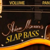 adam_monroe_music_slap_bass_icon.jpg