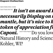 caponi_family_commercial_type_font_icon.jpg