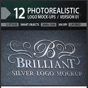 12 photorealistic logo mock ups version 01 5409348 icon