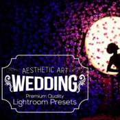Aesthetic wedding lightroom presets 298179 icon