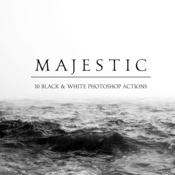 Creative market majestic black and white ps actions 1234517 icon