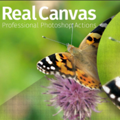 Creative market real canvas professional photoshop actions 1132085 icon