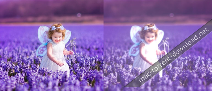 Customize the Soft Focus Effect