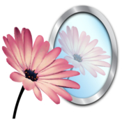 Photoreflector easily add reflections to photos and icons icon
