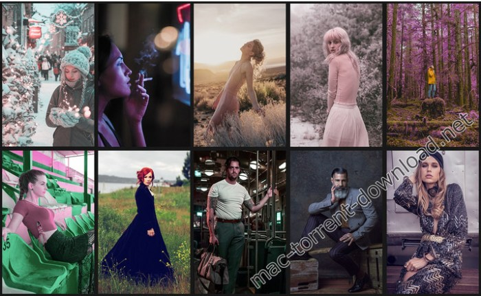 master_collection_all_10_color_profiles_packs_100_3d_luts