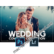 Wedding complete collection lr ps acr icon