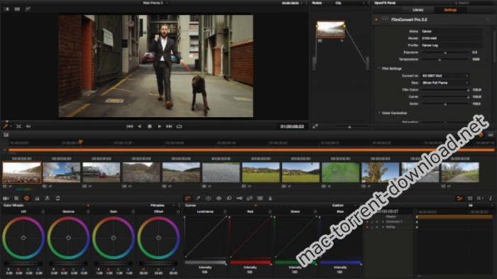 FilmConvert Nitrate 302 for After Effects and Premiere Pro Screenshot 03