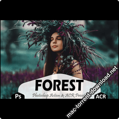 Forest Photoshop Actions and ACR Presets icon