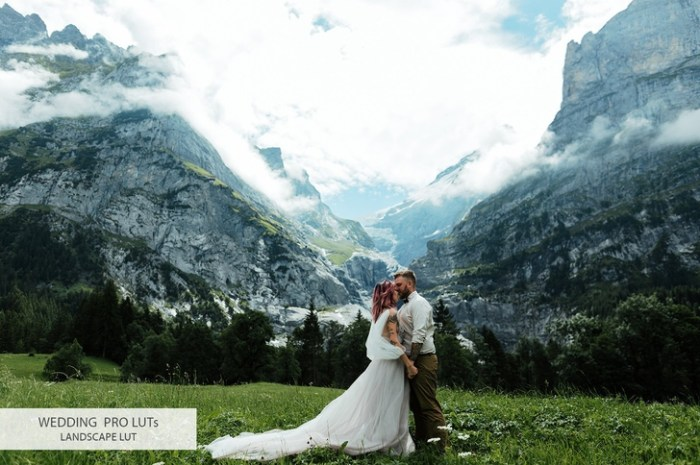 Wedding Video LUTs Pack for Final Cut Pro Photoshop After Effects Premiere Pro Screenshot 03 zxc9dkn