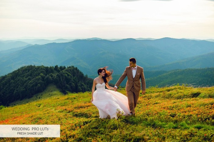 Wedding Video LUTs Pack for Final Cut Pro Photoshop After Effects Premiere Pro Screenshot 29 zxc9dkn