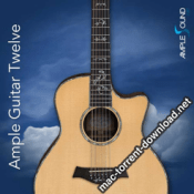 Ample Sound Ample Guitar Twelve icon