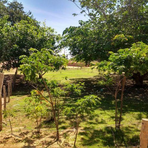 Camping Rio Xingu-são felix do xingu-PA-3