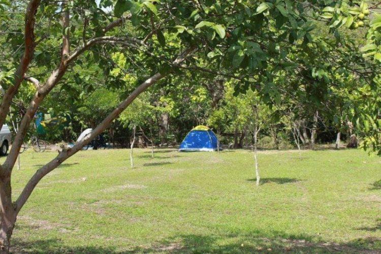 Camping Fazenda Touro Bravo