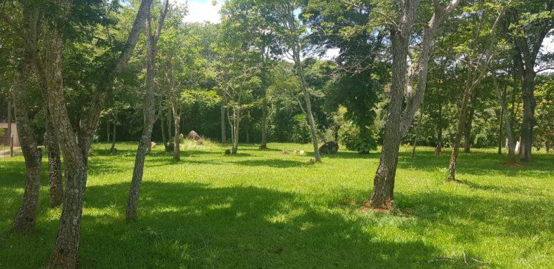 Camping Chácara Ninho da Águia