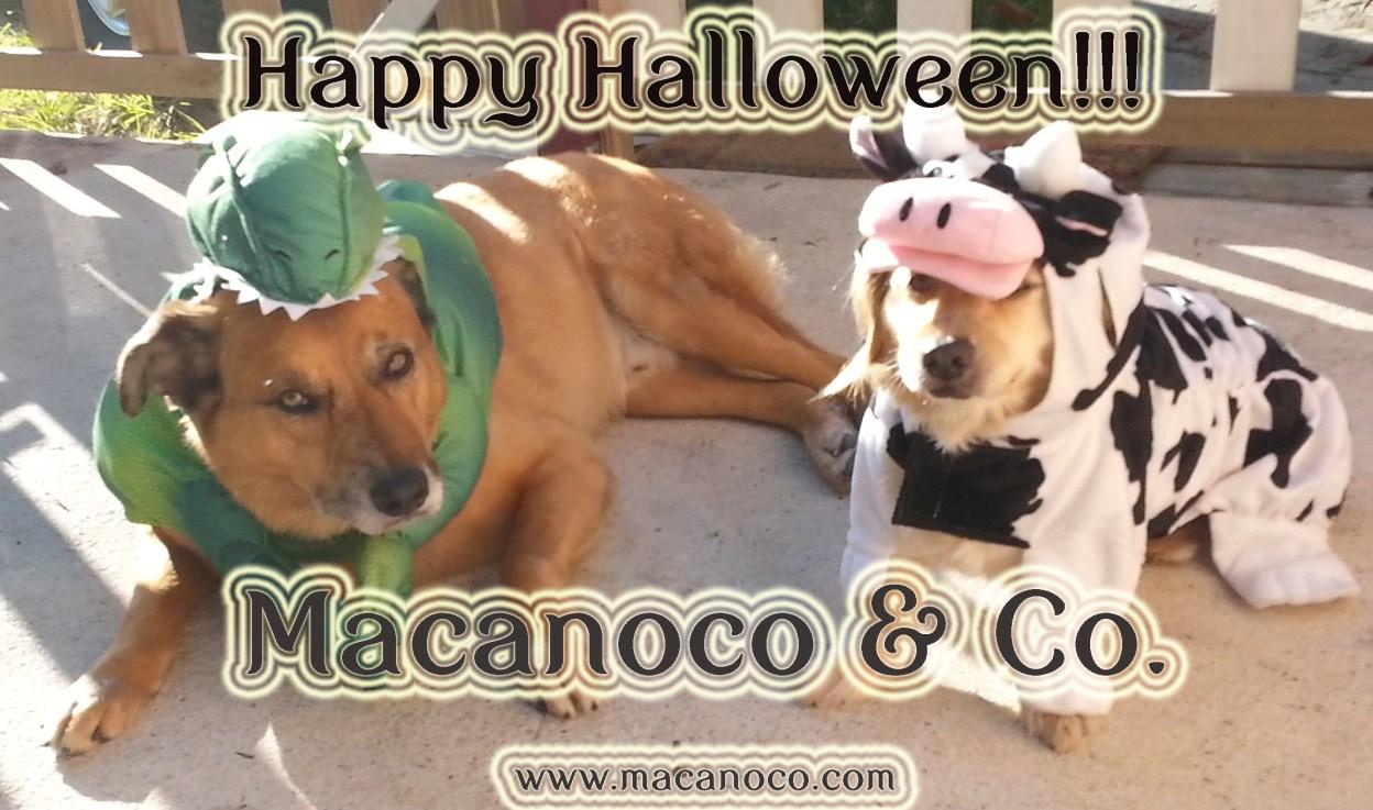Happy Halloween Ad 2014