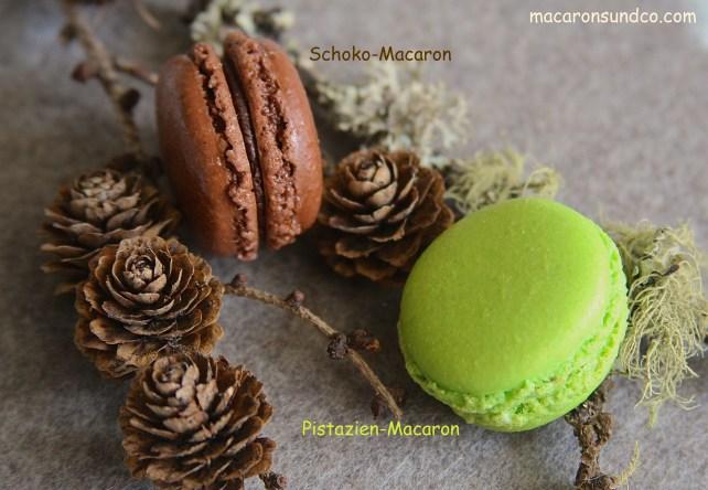 Macarons chocolat pistache IMG_0614