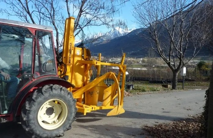 tree movers characteristics: which are the important one