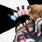 Gel Nagellak Alessandro Striplac Vs Essence Gel Nails