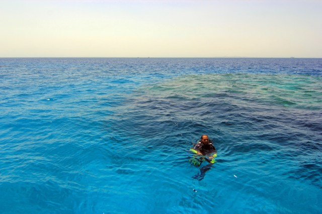 Diving in Hurghada, Egypt