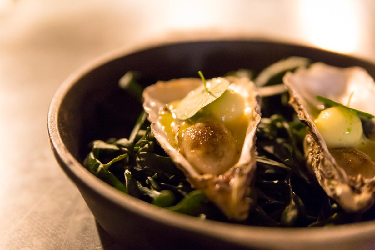 Apple and oysters at Ekstedt