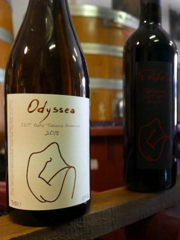 Odyssea ansonica orange wine