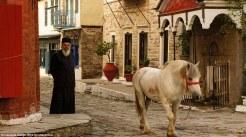 Άλογα περιπλανιούνται ελεύθερα στους δρόμους του Αγίου Όρους. Ωστόσο, εκτός από τις γυναίκες και τα παιδιά εδώ απαγορεύονται και τα θηλυκά ζώα