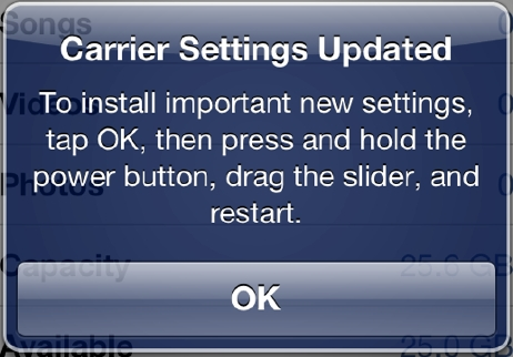iPhone 5 carrier settings 13.1