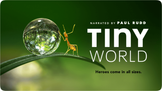 Tiny World narrated by Paul Rudd