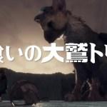 PS4 Pro 開梱レビュー