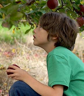 Newtown Movie Featured Image