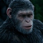 War for the Planet of the Apes Movie Featured Image