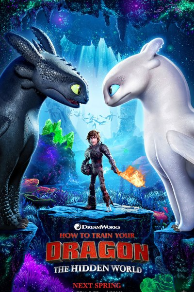 How to Train Your Dragon Hidden World Movie Poster