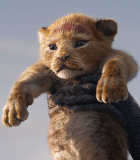 The Lion King (2019) Movie Featured Image