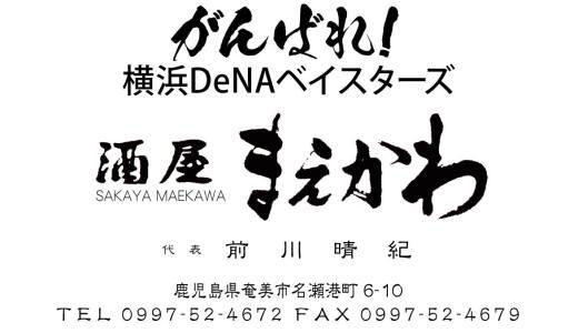 We Love 横浜DeNAベイスターズ #38