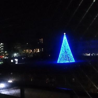 シバヒロ・クリスマスツリー