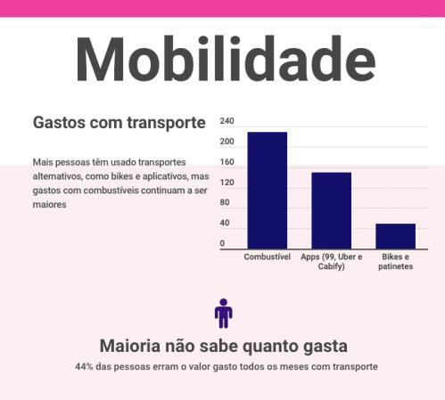 Gráfico de gastos com transporte