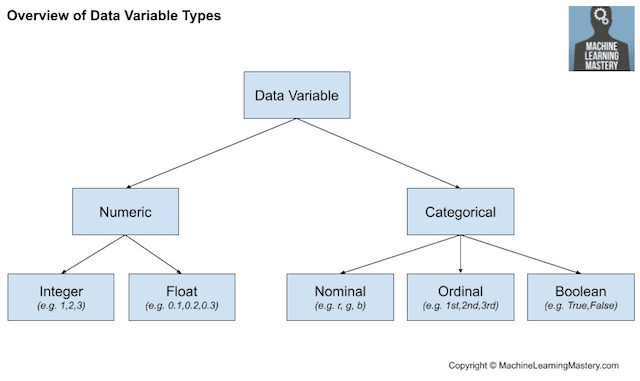 Overview of Data Variable Types