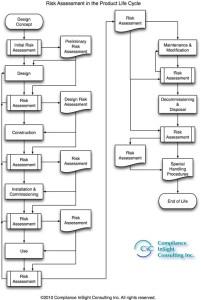 Risk Assessment Lifetime Flow Chart