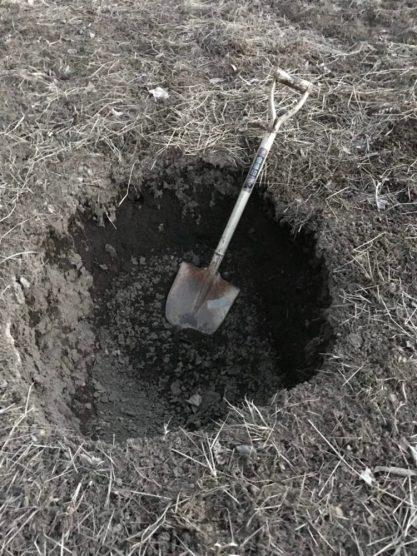 これは何でしょう。出没するイノシシを仕掛けようと堀った落とし穴。(東舘・女性)