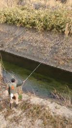 矢祭町、本日渓流釣り解禁です。