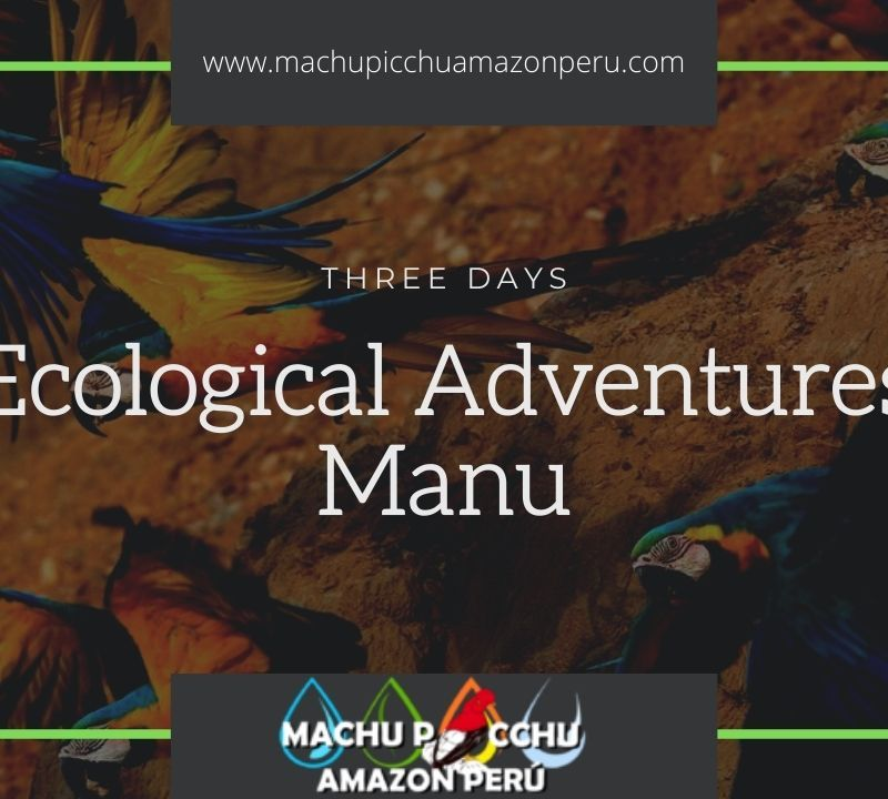 Ecological Adventures Manu