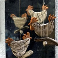 Hahn und Henne umkreisen sich misstrauisch beobachtend