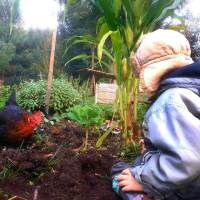 Berta und der Regenwurm