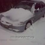 Zima vs Brak Zimy