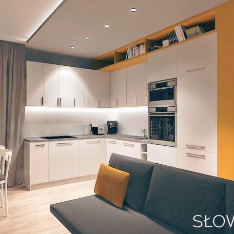 łozowa – salon kuchnia