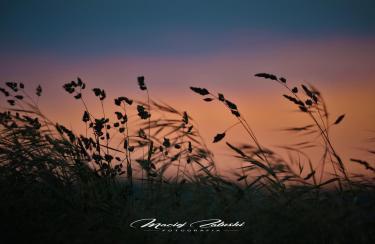 Francja-zachód-słońca-2018-Fot-Maciej-Zaluski-1