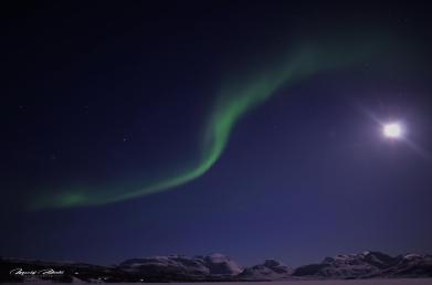Norwegia-Thromso-Oslo-Zorza-polarna-Aurora-borealis-Aurora-australis-03-2015-Fot-Maciej-Załuski-14