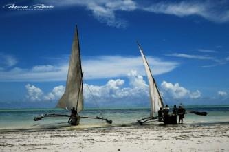Zanzibar-Masajowie-Masajki-Ocean-Owoce-warzywa-plaża-ludzie-Małpka-Fot.Macie-12