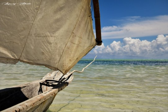 Zanzibar-Masajowie-Masajki-Ocean-Owoce-warzywa-plaża-ludzie-Małpka-Fot.Macie-13