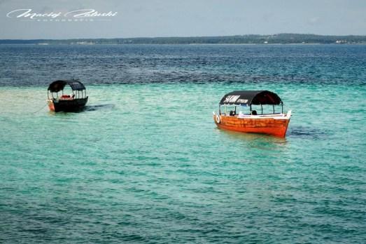 Zanzibar-Masajowie-Masajki-Ocean-Owoce-warzywa-plaża-ludzie-Małpka-Fot.Macie-228
